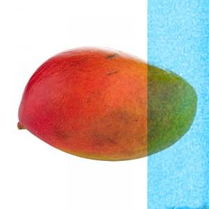 prophets_mango