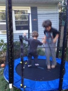 My boys trampolining. They could raise a lot of money in a trampolineathon.