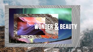 wonderbeauty